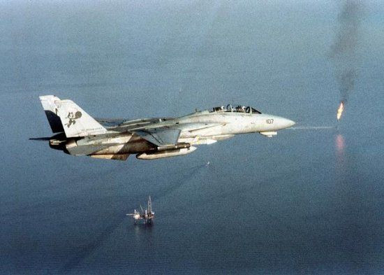 Last of Grumman's cats, the F-14 Tomcat