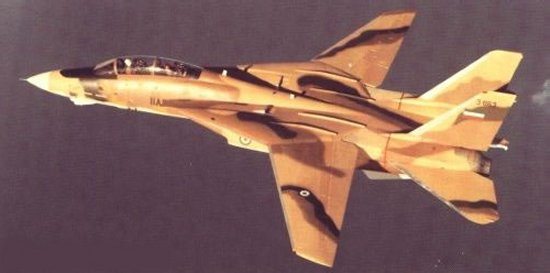 F-14 of the Imperial Iranian Air Force